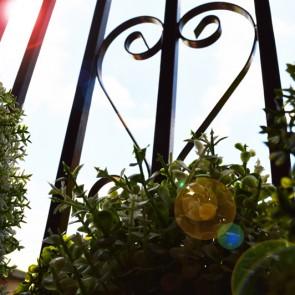 rosadipintohomes_susa7_balcony