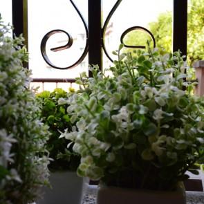 rosadipintohomes_susa7_kitchen_window