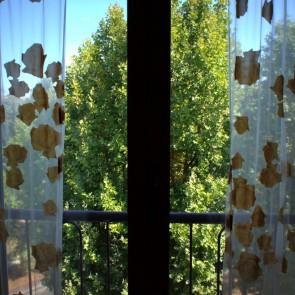 rosadipintohomes_susa7_window_view